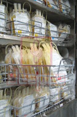 Plasma Freezer Blood Plasma Bags Blood Plasma Bags In